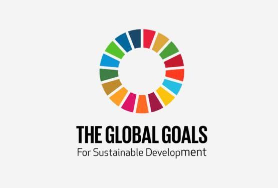 De Wereldwijde Doelen Van De Verenigde Naties